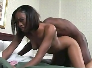 Ebony Doggystyle Hardcore Doggy Teen Ebony Babe Ebony Teen