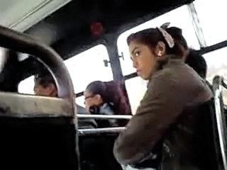 Public Amateur Bus Amateur Teen Bus + Public Bus + Teen