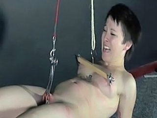 Extreme Bdsm Torture Bdsm Bbw Babe Webcam Blowjob