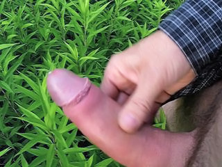 Cumming on plants