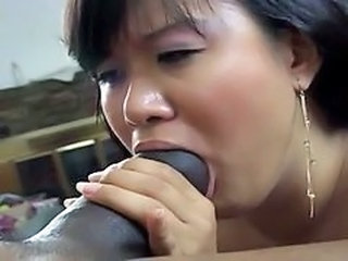 Stor kuk Interracial Blowjob Stor Kuk asiatisk Stor Kuk Blowjob Blowjob Stor Kuk