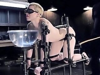 Bdsm Bondage Fetish Anal First Time Bdsm First Time