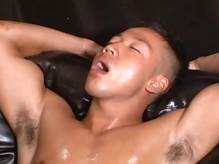 Asian Muscled