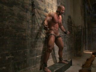 Muscle Stud Robert Axel Takes On Torment Test