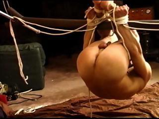 Suspended hog tied dude gets ball bashing and his bubble butt fucked with a dildo.