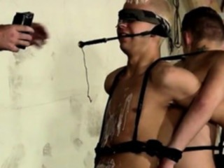 bdsm, blowjob, boys, homosexual, old plus young