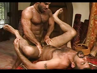 HAIRY MUSCLE COUPLE PAREJA DE OSOS