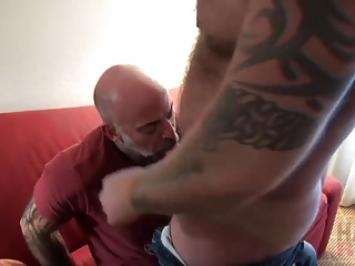 bears, blowjob, bodybuilder, emo tube, homosexual