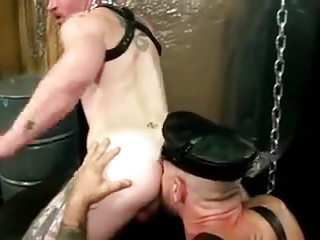 bears, blowjob, bodybuilder, homosexual, leather