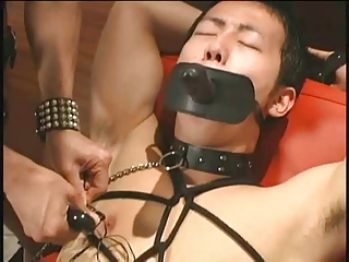 Asian Bdsm Fetish