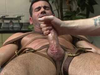 Video from: pornhub | colt, hairy, homosexual, horny, muscle