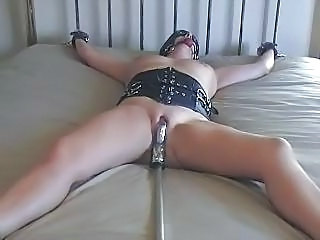 Tracyd Approximately Bondage
