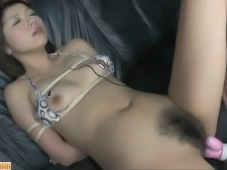 Toy Hairy Asian